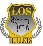LOS Logo